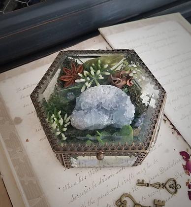 Celestite Crystal Garden Terrarium