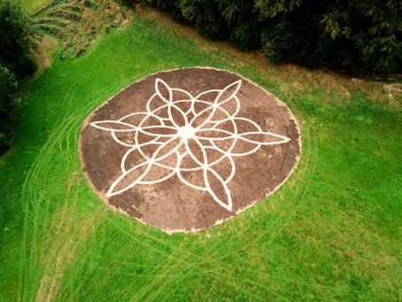 Schlossgarten II / Castle Garden II