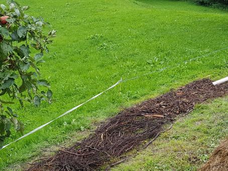 Mietenkompostierung / Composting