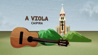 12-viola.jpg