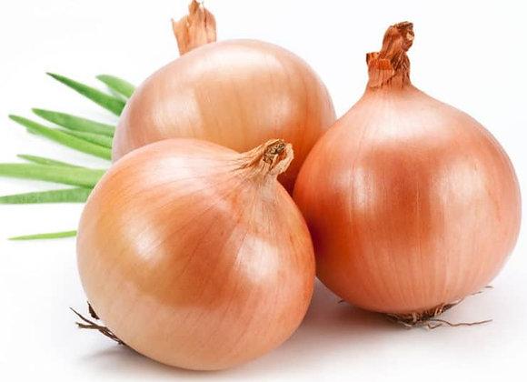 Onion Medium  1kg