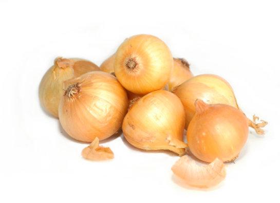 Onion xs pickle