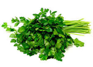 Herb - italian parsley
