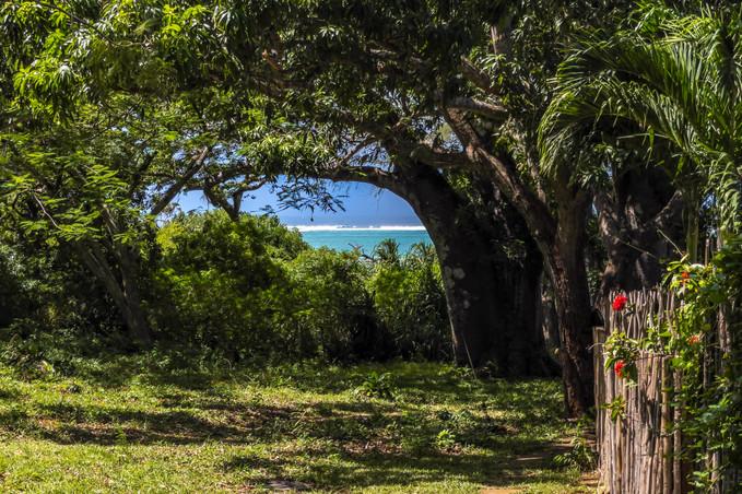 Insallah Beach Cottage June 2021 4K-0027-IMG_6421-Enhanced.jpg