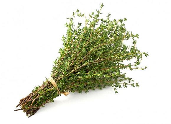 Herb - thyme