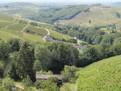 Coteaux Crus Beaujolais