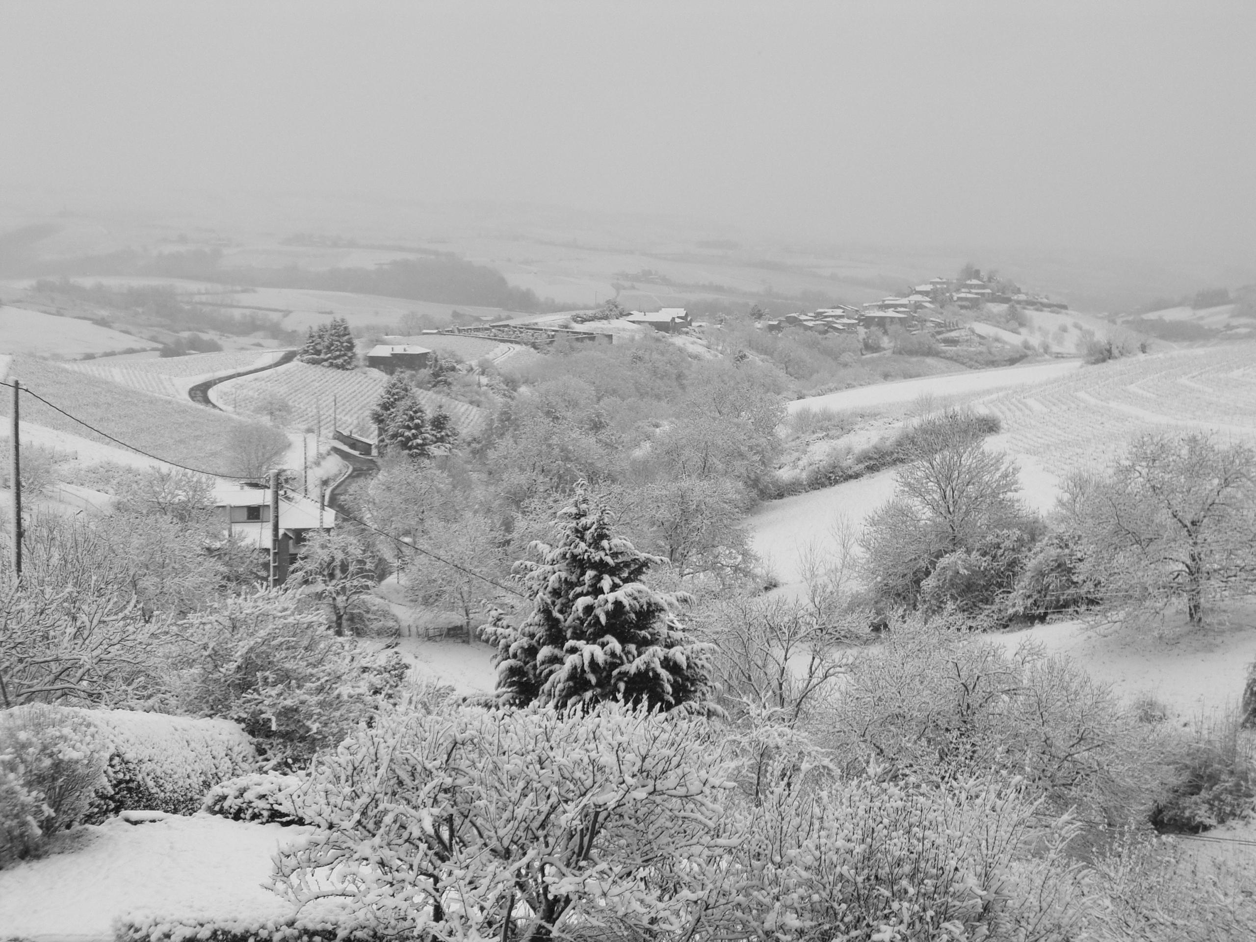 Ternand neige