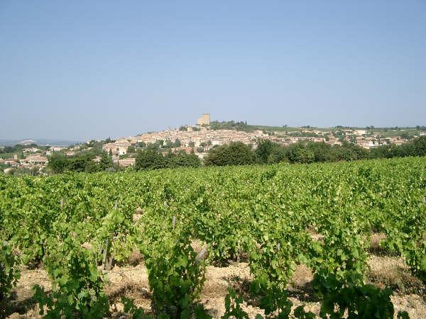 Village de Chateauneuf-Du-Pape