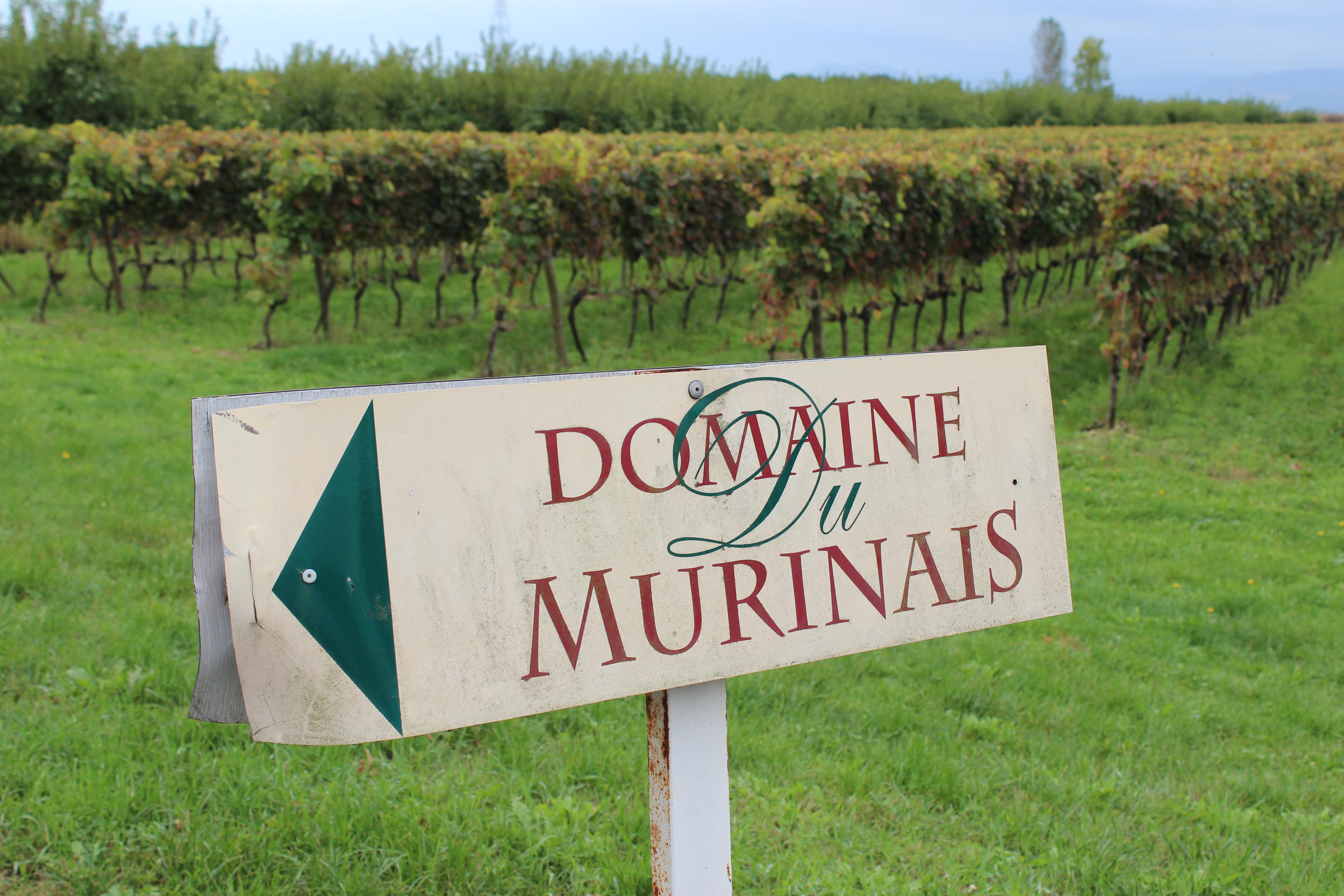 Domaine du Murinais