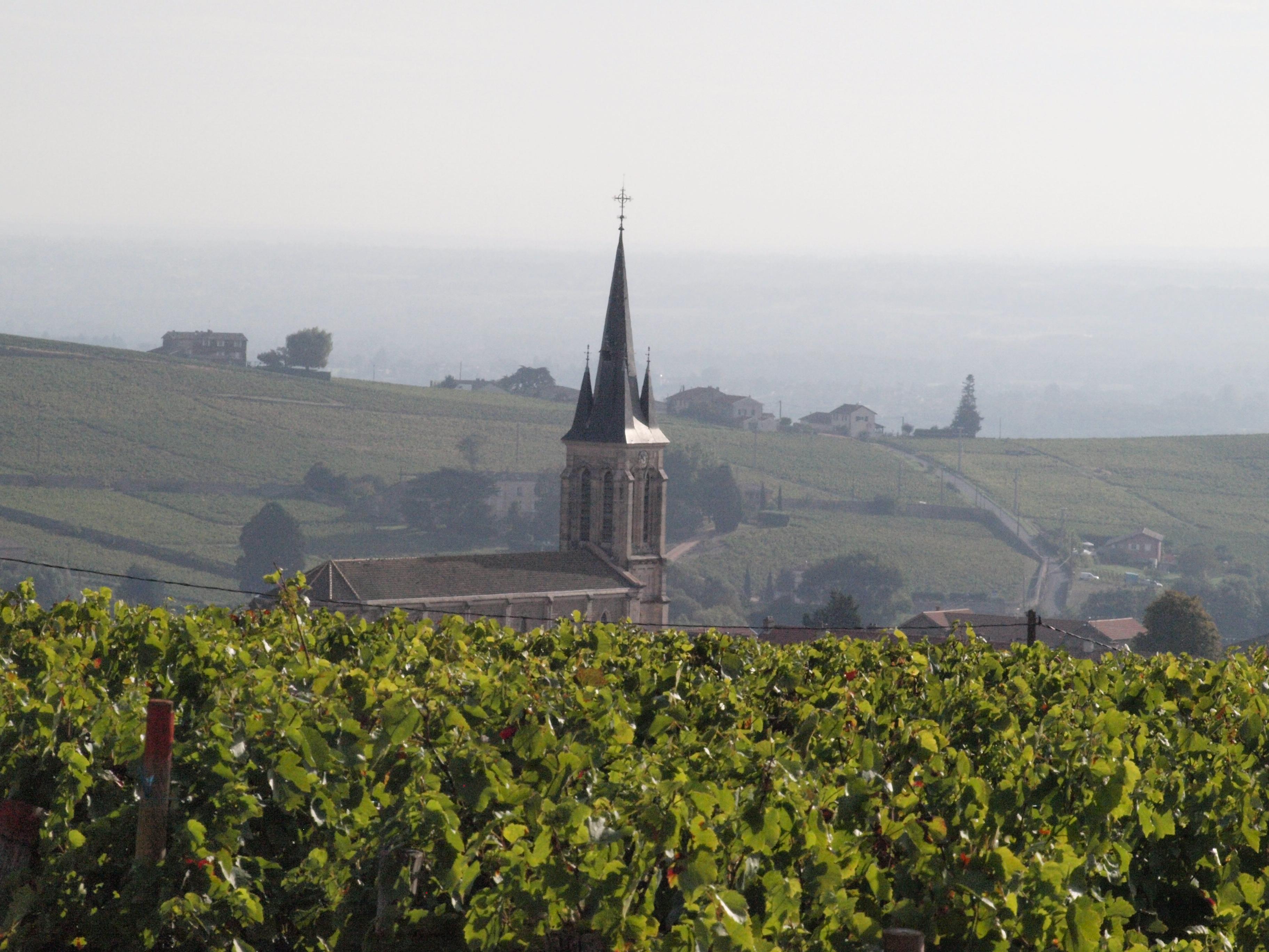 Village Beaujolais