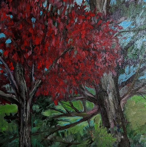 """Autumn in Glen Mills"" by Carol Mangano"