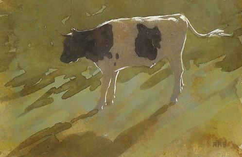 """Slant of light"" by Robert Stack"