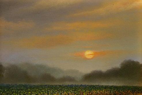 """Morning mist"" by Linda Barr"