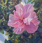 Hibiscus-in-oil thumb.jpg