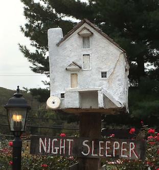 "Andrew Wyeth's ""Night Sleeper"""