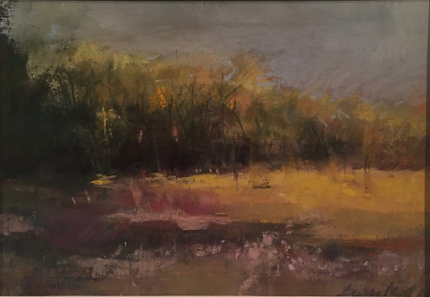 Late Afternoon Light by Barbara Neville