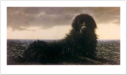 Newfoundland Jamie Wyeth print black dog with the ocean