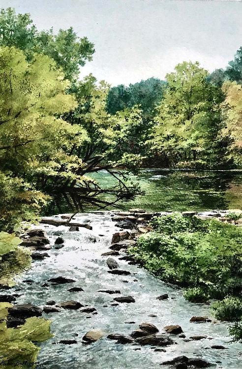 """Up Stream"" by Richard Bollinger"
