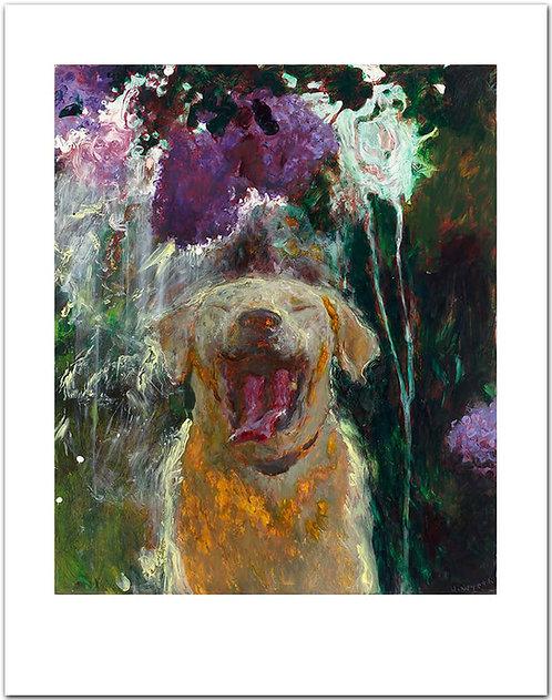 Dog under Lilacs in a Downpour Jamie Wyeth print rain