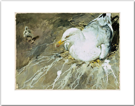 Run Jamie Wyeth print mother and baby sea gull