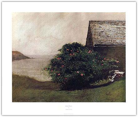island roses Jamie Wyeth print Monhegan Maine