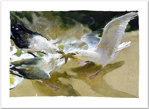 Sea Battle Jamie Wyeth print sea gulls fighting over a starfish