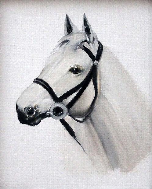 White Reined Horse