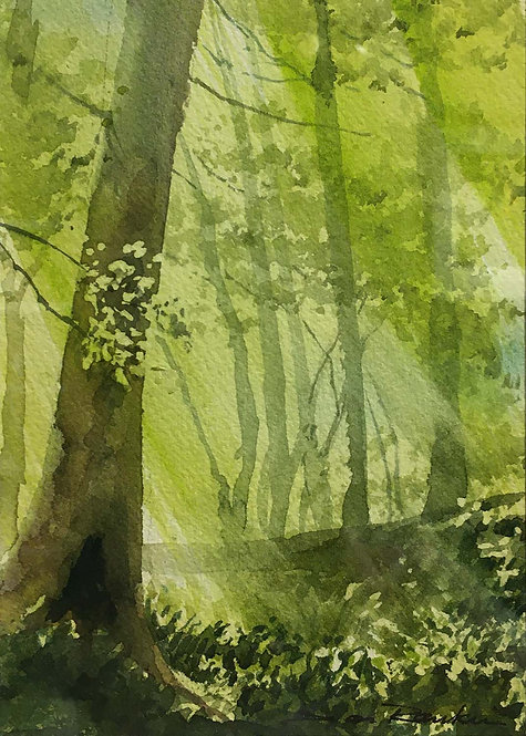 """Near My Studio"" by Don Rankin"