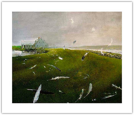 Airborne Andrew Wyeth print gull feathers