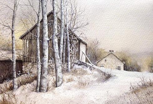 """Winter Birches"" by Don Shoffner"