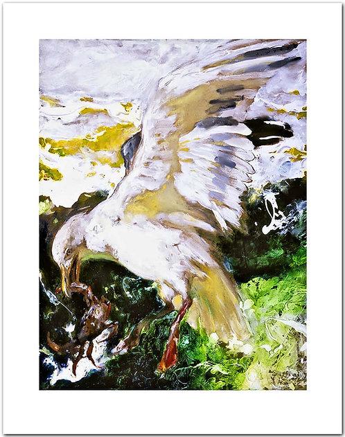 Peeky Toe Jamie Wyeth print sea gull crab
