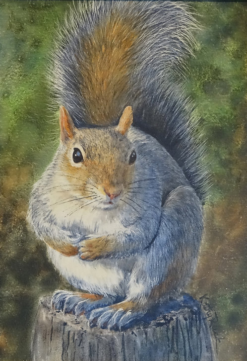 """""""Squirrel Waiting for Peanut"""" by Kathy Ruck"""