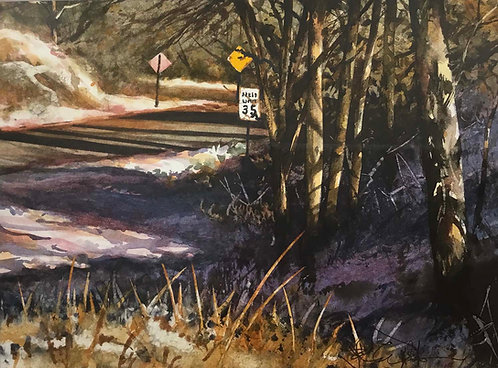 """Late Afternoon - Highway 591"" by John Wilkison"