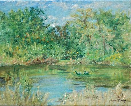 """Duck Pond"" by Carol Gray"