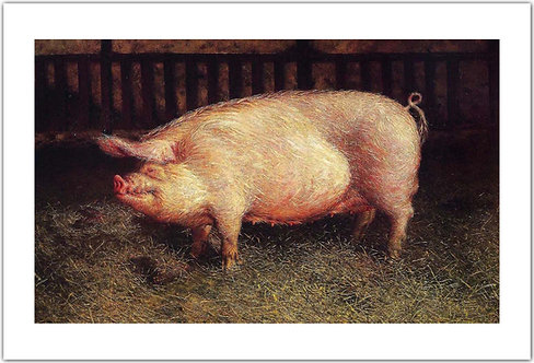 Portrait of Pig  Jamie Wyeth print pig in a barn Den-Den