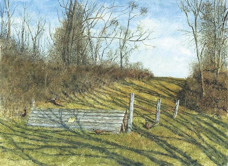 pheasant run - Paul Scarborough