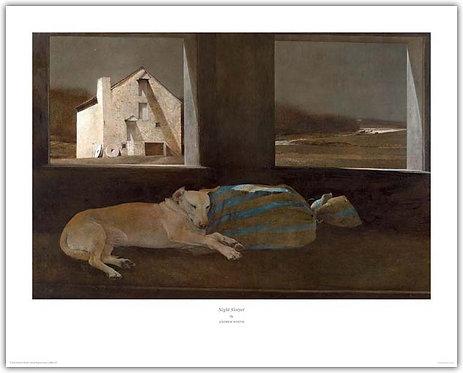 Night Sleeper - Andrew Wyeth print  dog