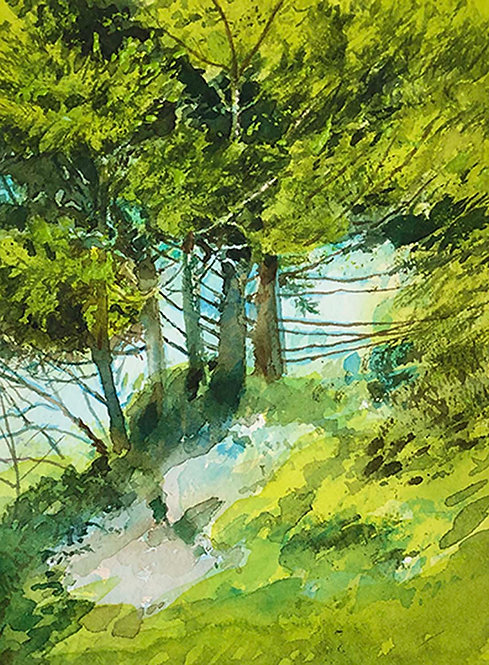 """""""Pine Thicket"""" by Don Rankin"""