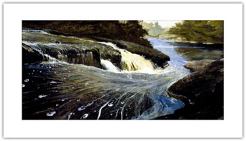 The Carry by Andrew Wyeth print pigmented giclee water fall  river