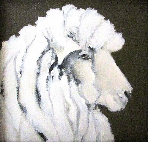 """""""Sheep-ish"""""""