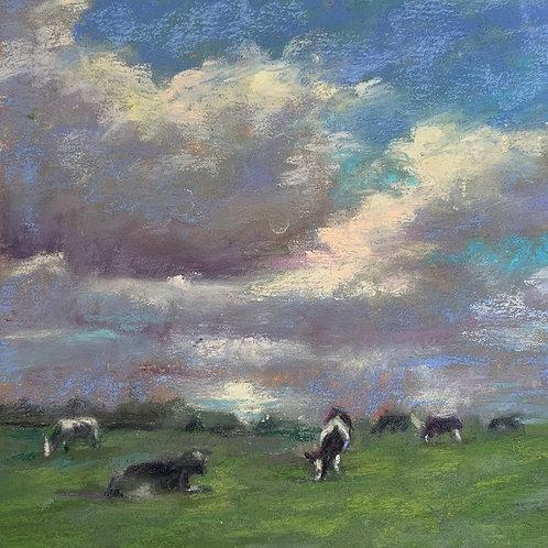 """""""Irish Cows"""" by Helena van Emmerik-Finn"""