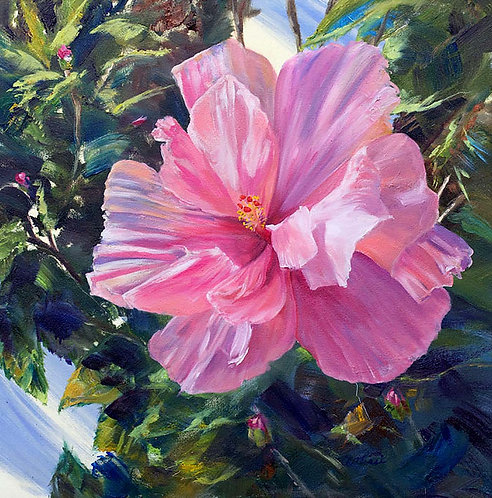 """""""Pink Hibiscus"""" by Annette Alessi"""