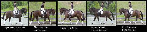 Rider-posture.jpg