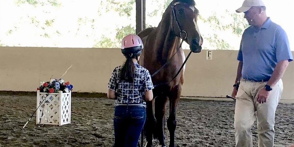 Foothills CDS Sporthorse In–Hand Clinic with Kevin Reinig