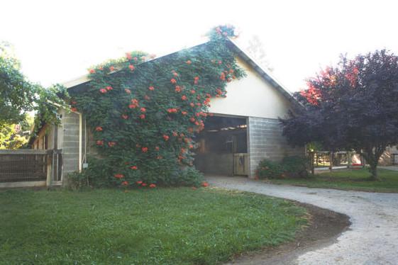 Back Main Barn