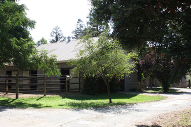 Main Barn Outside runs