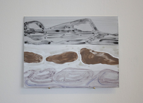 Untitled (Walruses in Forlandet)