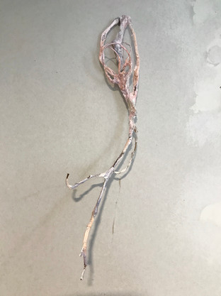 Plaster, wire, wood, watercolour