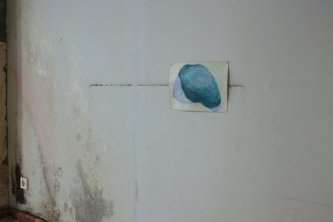 Oil and encaustic on paper