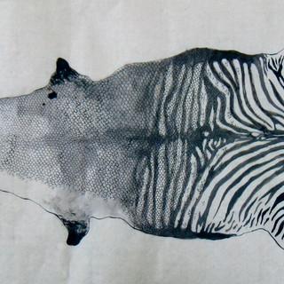 """""""Ichtus Equus"""" 2014"""